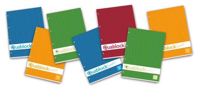 blocchi quablock a4 5mm Pigna 00609775M 8005235279261 00609775M_28917 by Pigna
