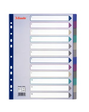 Separatore in ppl traslucido 12 tasti f.to a4 maxi 24,5x29,7cm esselte 20649 5024942206493 20649_49633 by Esselte