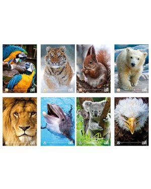 Maxi fg.18+1 gr.100 con risguardo animali  10m BRAND ASSORTITI 6010174 8008234199981 6010174