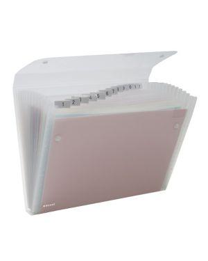 Cartella a 13 tasche 22x30cm trasparente ice rexel 2102035 5028252255875 2102035_62060