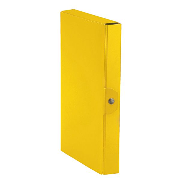 Cartelle a scatola Delso Order Colore Giallo ES_390384090 by Esselte