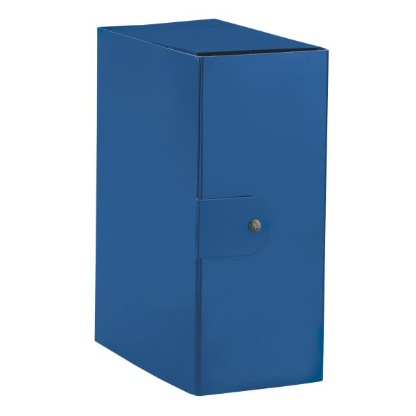 Cartelle a scatola Delso Order Colore Blu ES_390395050 by Esselte