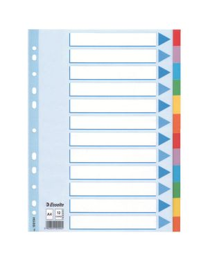 Intercalare in cartoncino A4 Esselte Colore Multicolore ES_100194 by Esselte