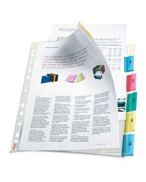 Busta Index Esselte Colore Trasparente ES_414160