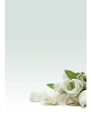"""Carta con stampa """"rosa bianca'"""" a4 90gr 20fg decadry T036126 8410782121268 T036126_76227 by Decadry"""