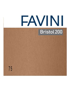 Conf.10 cartoncino bristol color 200gr 100x70cm marrone 75 favini A3580A1