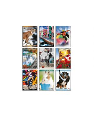 Maxi spirale fantasia fg.70 s - fori 5m BLASETTI 2361 8007758123618 2361 by Blasetti