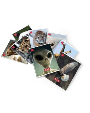 cartelle 3l wildlife a4 d1.2 Pigna 02299193L 8005235528499 02299193L